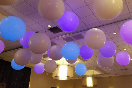 Balloons by Tommy - Ceiling Decor